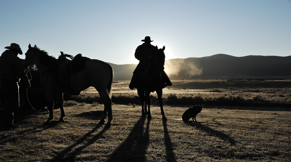 Cowboys at day break